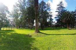Foto Campo en Venta en  Tomas Jofre,  Mercedes  Estancia La Quebrada 000