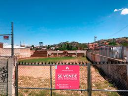 Foto Terreno en Venta en  Lealtad,  Chihuahua  TERRENO LEALTAD 1