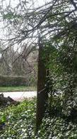 Foto Quinta en Venta en  Tristan Suarez,  Ezeiza  ERRATCHU al 1300
