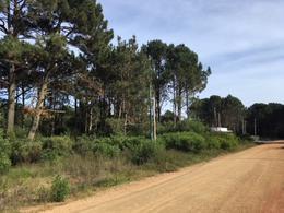 Foto Terreno en Venta en  Pinares,  Punta del Este  Parque Burnett