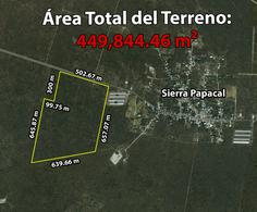Foto Terreno en Venta en  Pueblo Sierra Papacal,  Mérida  Terreno De 44.98 Hectáreas En Sierra Papacal