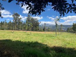 Foto Terreno en Venta en  Los Chillos,  Quito  COTOGCHOA