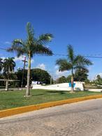 Foto Local en Renta en  Cancún Centro,  Cancún  LOCAL EN RENTA EN AVENIDA NADER Y AVENIDA COBA C2088