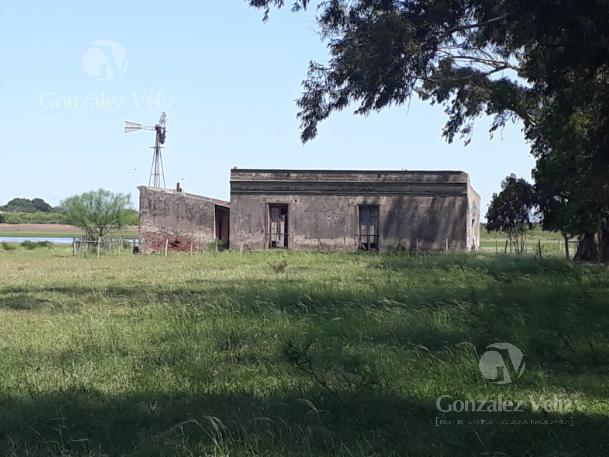 Foto Campo en Venta en  Villa Soriano ,  Soriano  Fray bentos