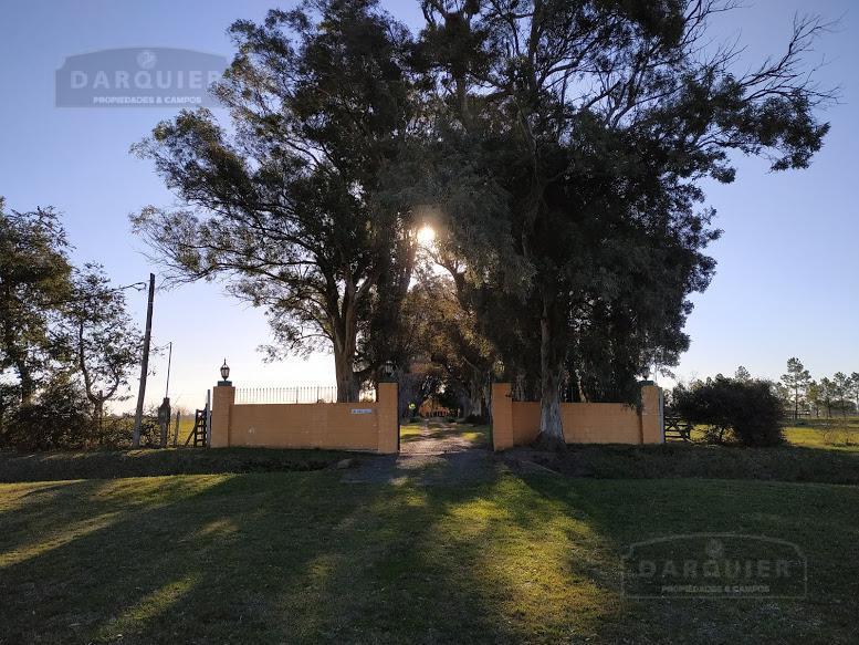 Foto Campo en Venta en  Punta Indio,  Punta Indio      58 Ha. Punta Indio
