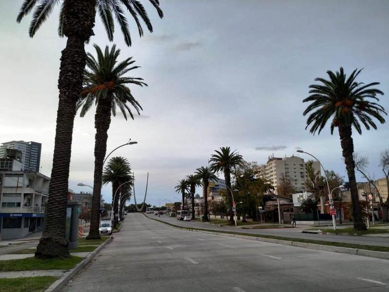 Foto Local en Venta en  Jacinto Vera ,  Montevideo  ARTIGAS, BLVR GRAL 2900
