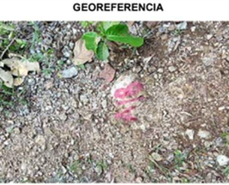 Jardines del Sur Terreno for Venta scene image 4