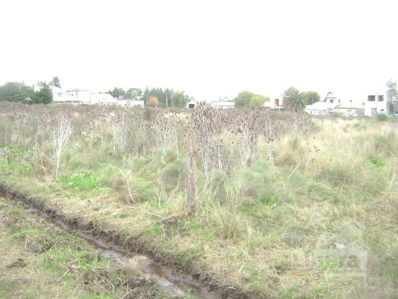 Foto Terreno en Venta en  La Plata,  La Plata  Calle 12 entre 662 Y 663 - Sicardi