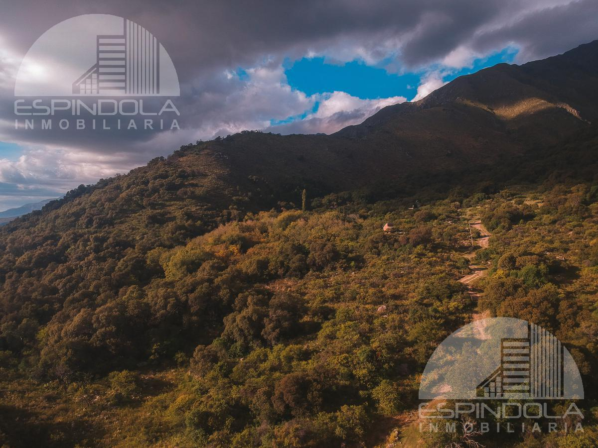Foto Campo en Venta en  Quebracho Ladeado,  San Javier  Campo con vertiente - Quebracho, Córdoba