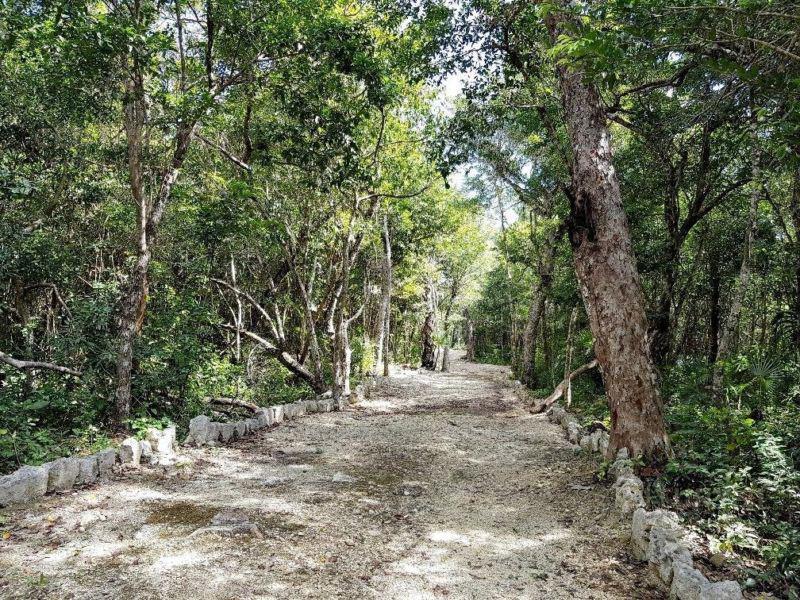 Tulum Land for Sale scene image 0