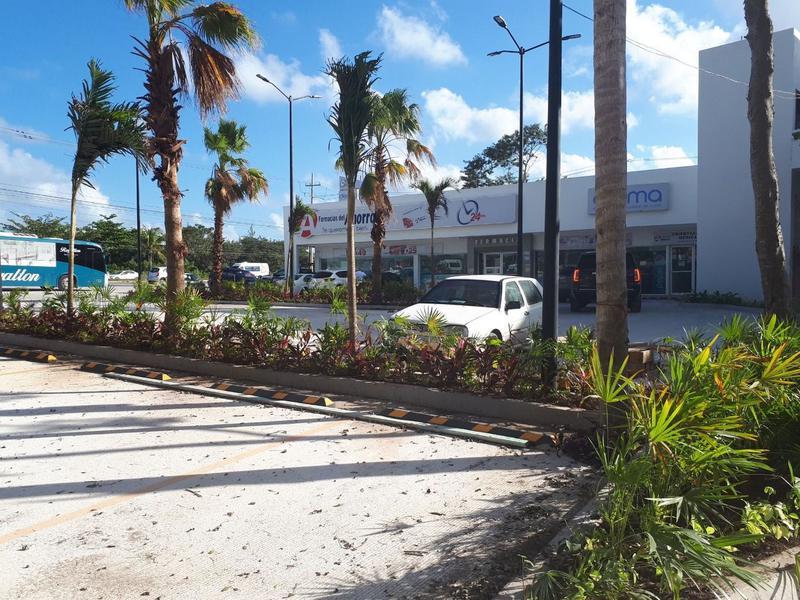 Cancún Bussiness Premises for Rent scene image 5