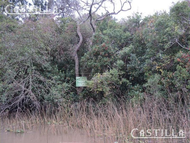 Foto Terreno en Venta en  Sabalos,  Zona Delta Tigre  ARROYO SABALOS