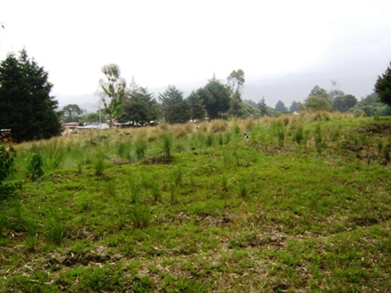 Foto Terreno en Venta en  Santa Catarina del Monte,  Texcoco  TEXCOCO a 15' Tehotihuacán  50ha. COMERCIAL, INDUSTRIAL HABITACIONA