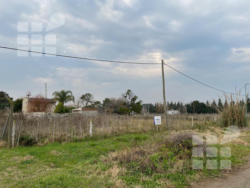 Foto Terreno en Venta en  Lisandro Olmos Etcheverry,  La Plata  Los Rosedales lote 14 y 15