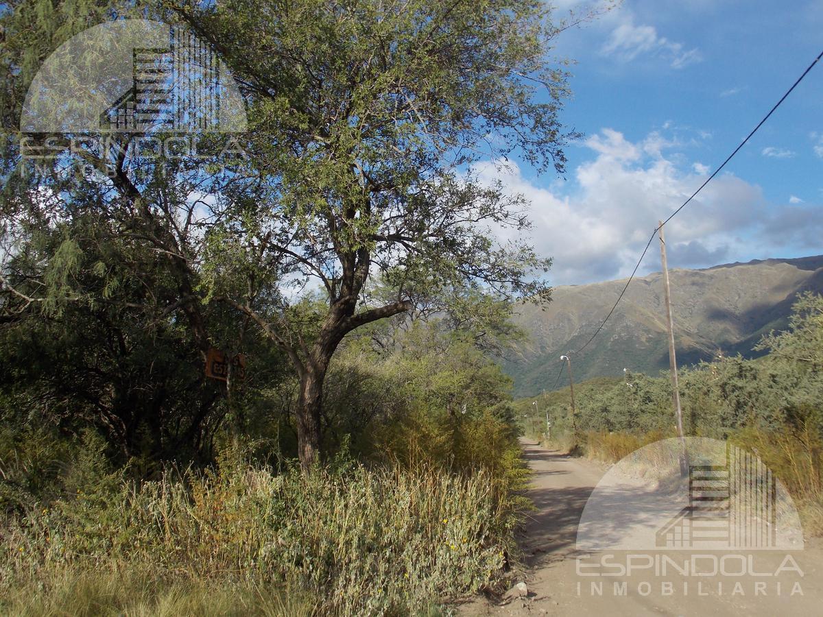 Foto Terreno en Venta en  Carpinteria,  Junin  Los Estribos