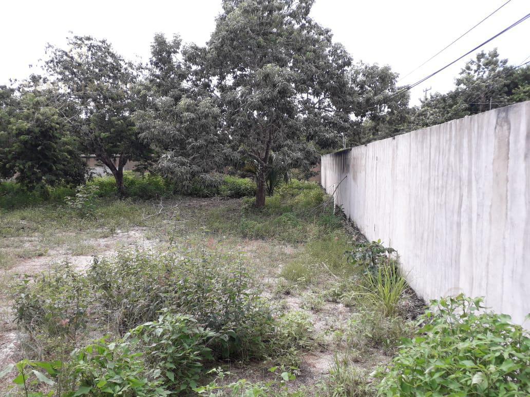 Benito Juárez Land for Sale scene image 9