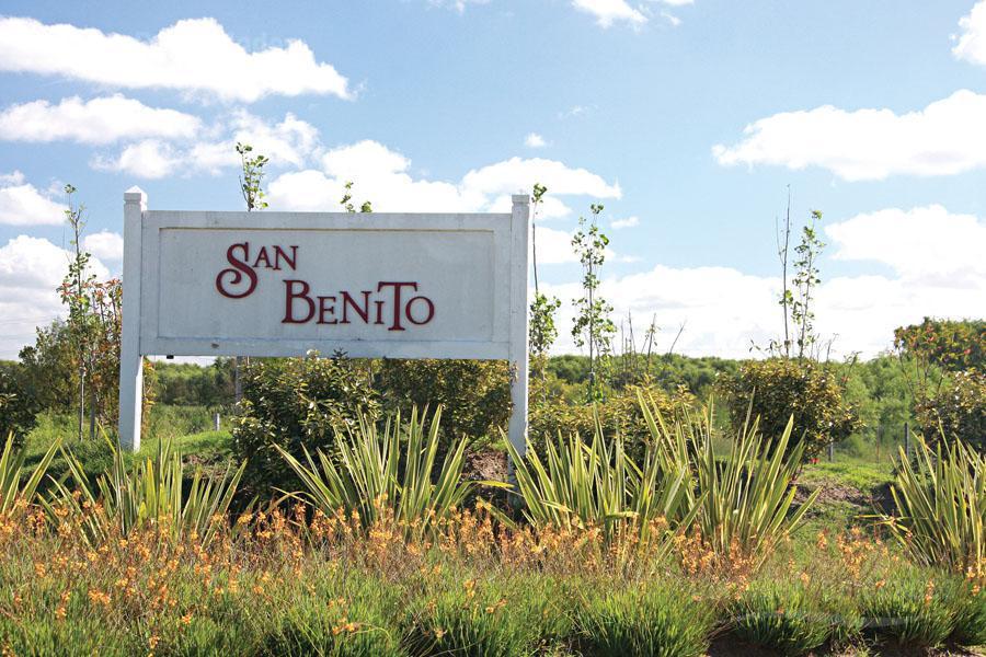 Foto Terreno en Venta en  San Benito,  Villanueva  Barrio San Benito a la Laguna!!