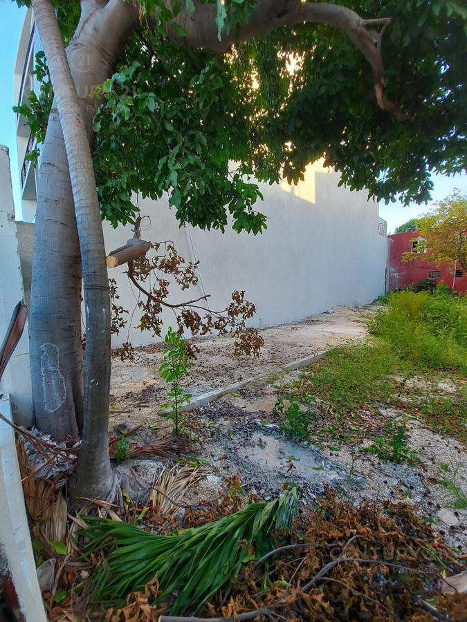 Playa del Carmen Land for Sale scene image 14