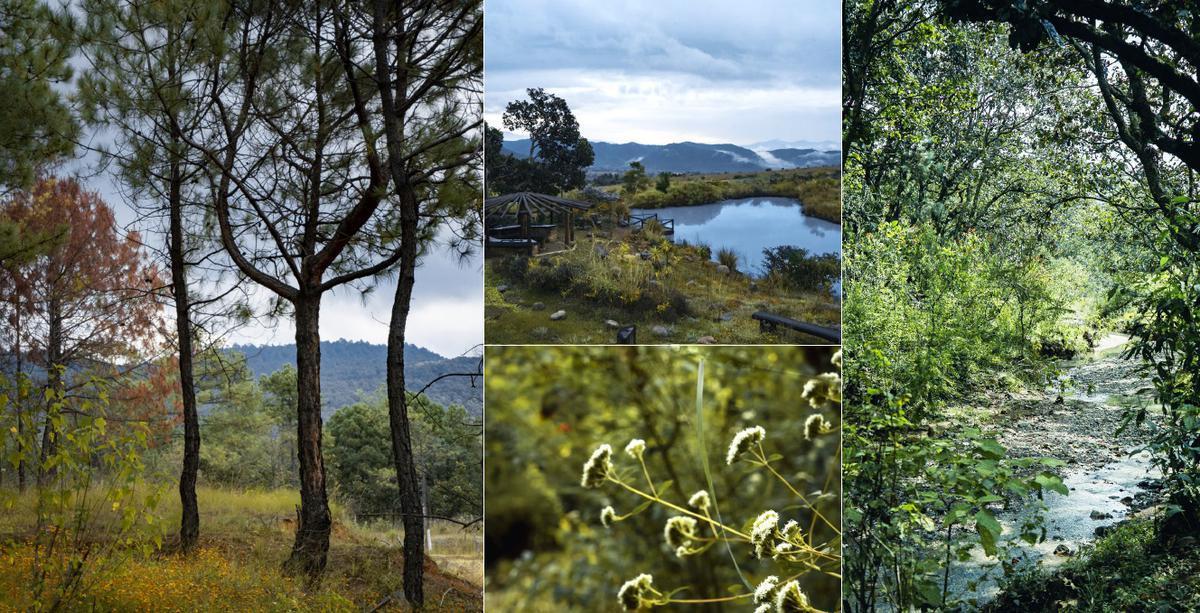 Foto Terreno en Venta en  Valle de Bravo,  Valle de Bravo  A la venta Terrenos en extraordinario Residencial en Valle de Bravo (DM)