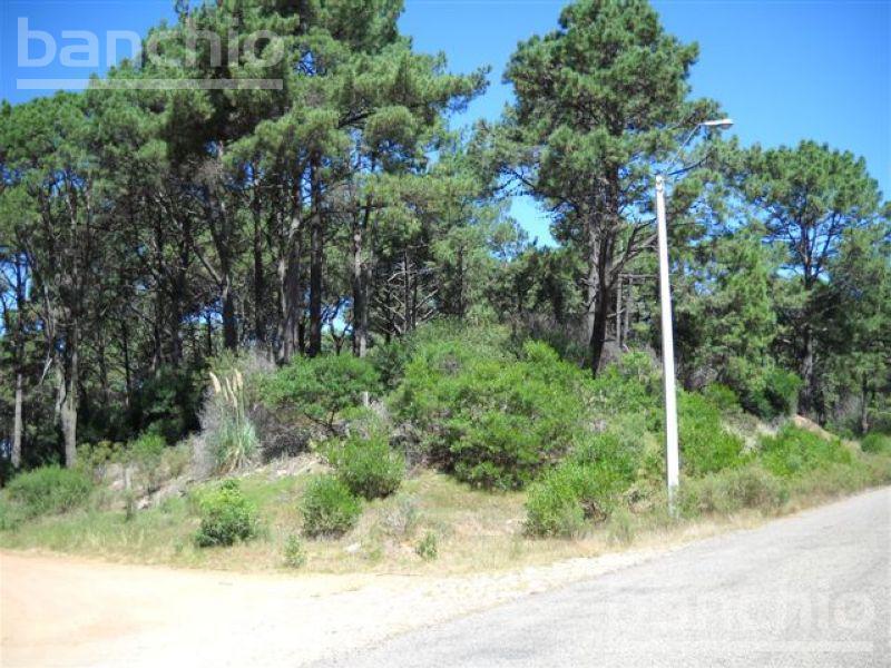 Punta del Este  Uruguay , , Maldonado. Venta de Terrenos - Banchio Propiedades. Inmobiliaria en Rosario