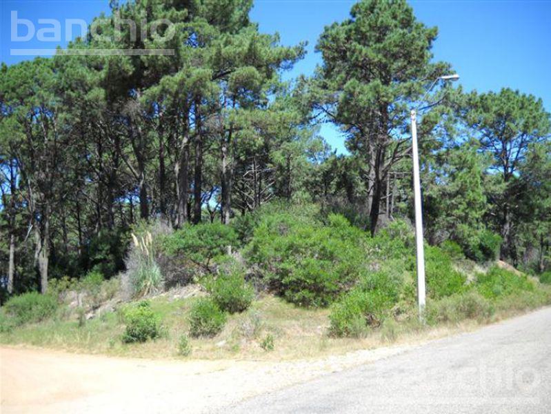Punta del Este  Uruguay , Maldonado. Venta de Terrenos - Banchio Propiedades. Inmobiliaria en Rosario