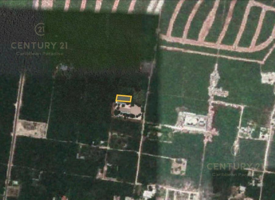 Cancún Land for Sale scene image 0
