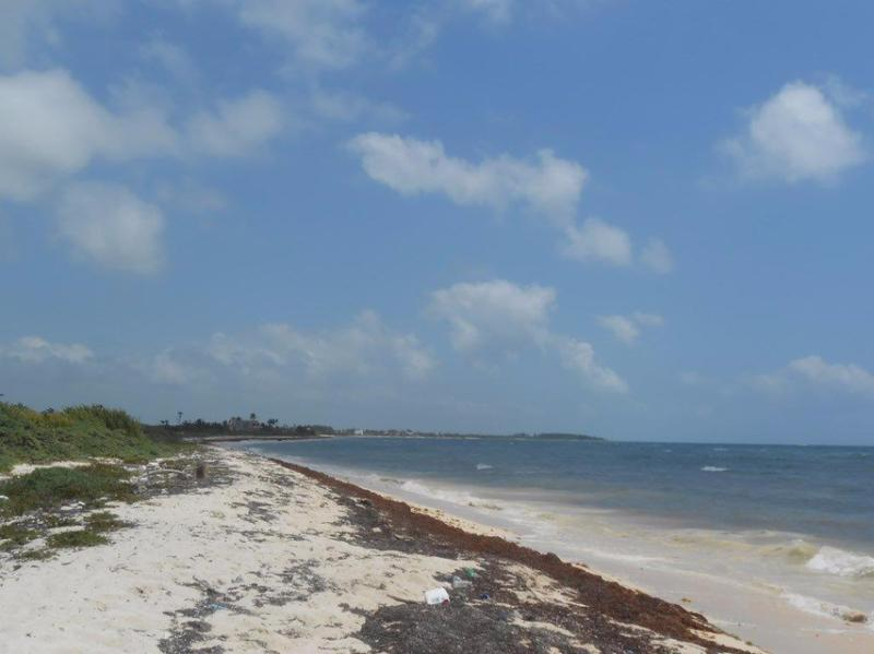 Mahahual Land for Sale scene image 0