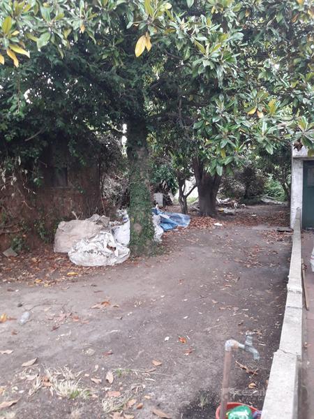 Foto Terreno en Venta en  Llavallol,  Lomas De Zamora  Ascasubi 171 (Lote)