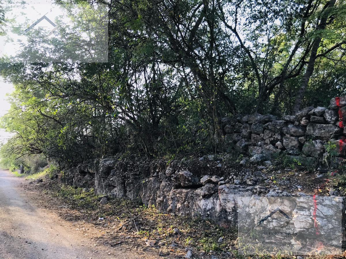 Foto Terreno en Venta en  Pueblo Tebec,  Umán  Ocho Lotes Semiurbanizados Disponibles - Umán, Tebec