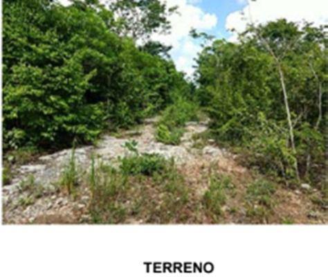 Jardines del Sur Terreno for Venta scene image 6