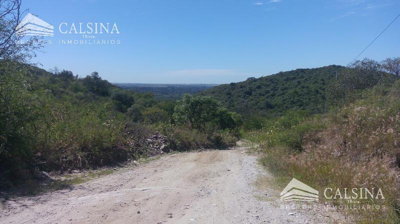 Foto Campo en Venta en  Calamuchita ,  Cordoba  La Paisanita - Punta Serrana - Córdoba