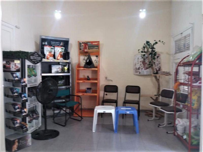 Foto PH en Venta en  Palermo ,  Capital Federal  Sanchez DE Bustamante 2400