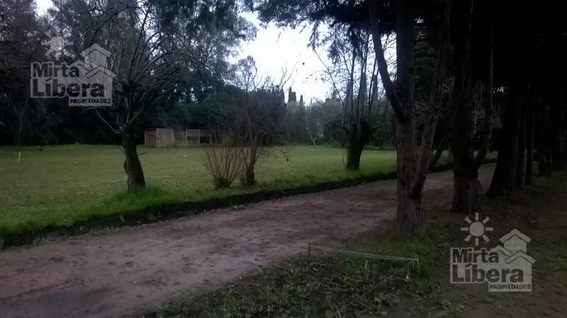 Foto Terreno en Venta en  La Plata ,  G.B.A. Zona Sur  Calle 11 Bis e/ 600 y 601