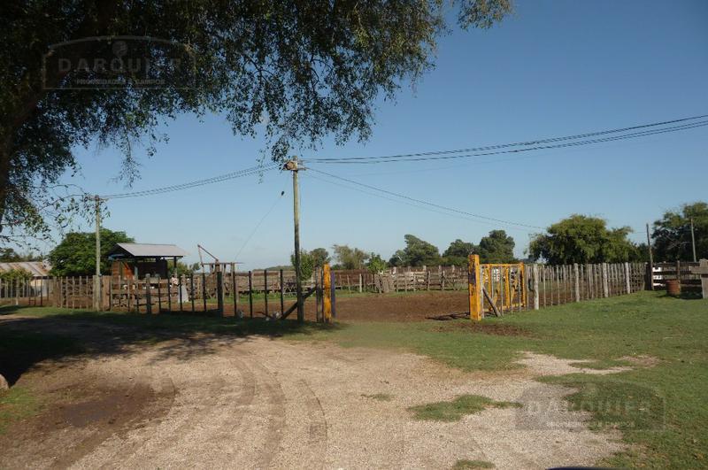 Foto Campo en Venta en  Alvarez Jonte,  Punta Indio  345 HA. ALVAREZ JONTE