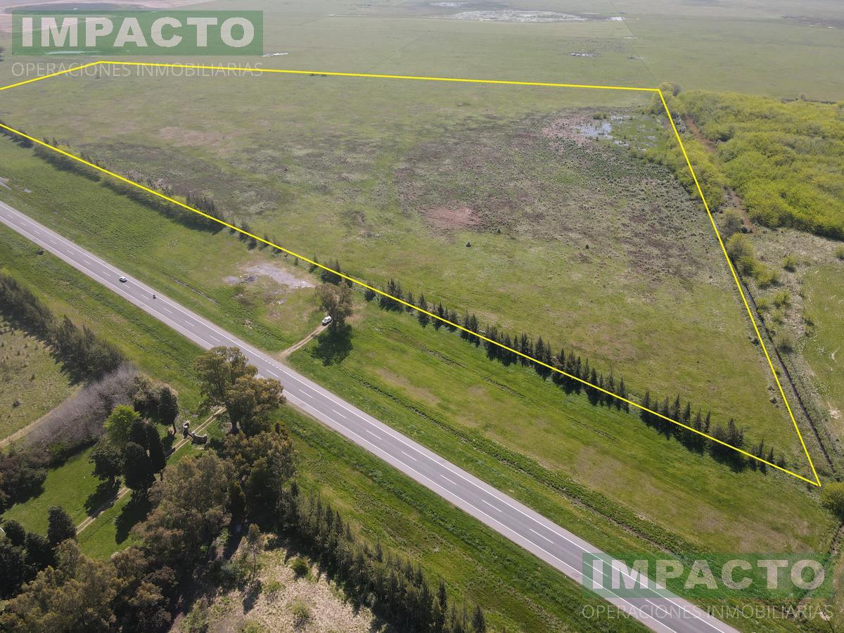 Foto Campo en Venta en  Uribelarrea,  Cañuelas  Uribelarrea Cañuelas Sobre ruta 205