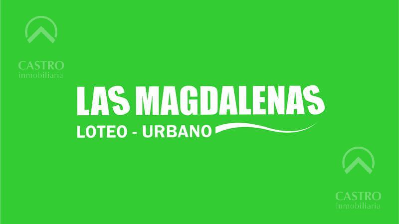 Foto Terreno en Venta en  Las Magdalenas,  Merlo  A 8 cuadras del centro de la ciudad