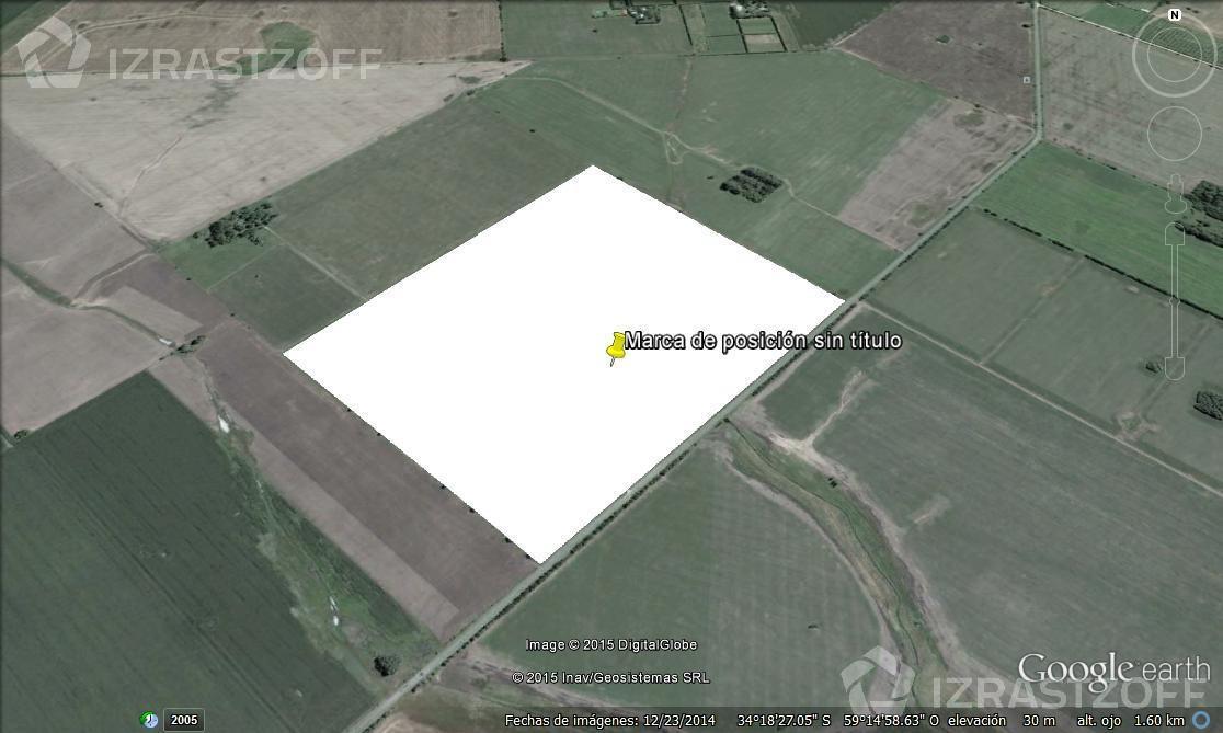Campo-Venta-Diego Gaynor-Ruta 8 Km 91