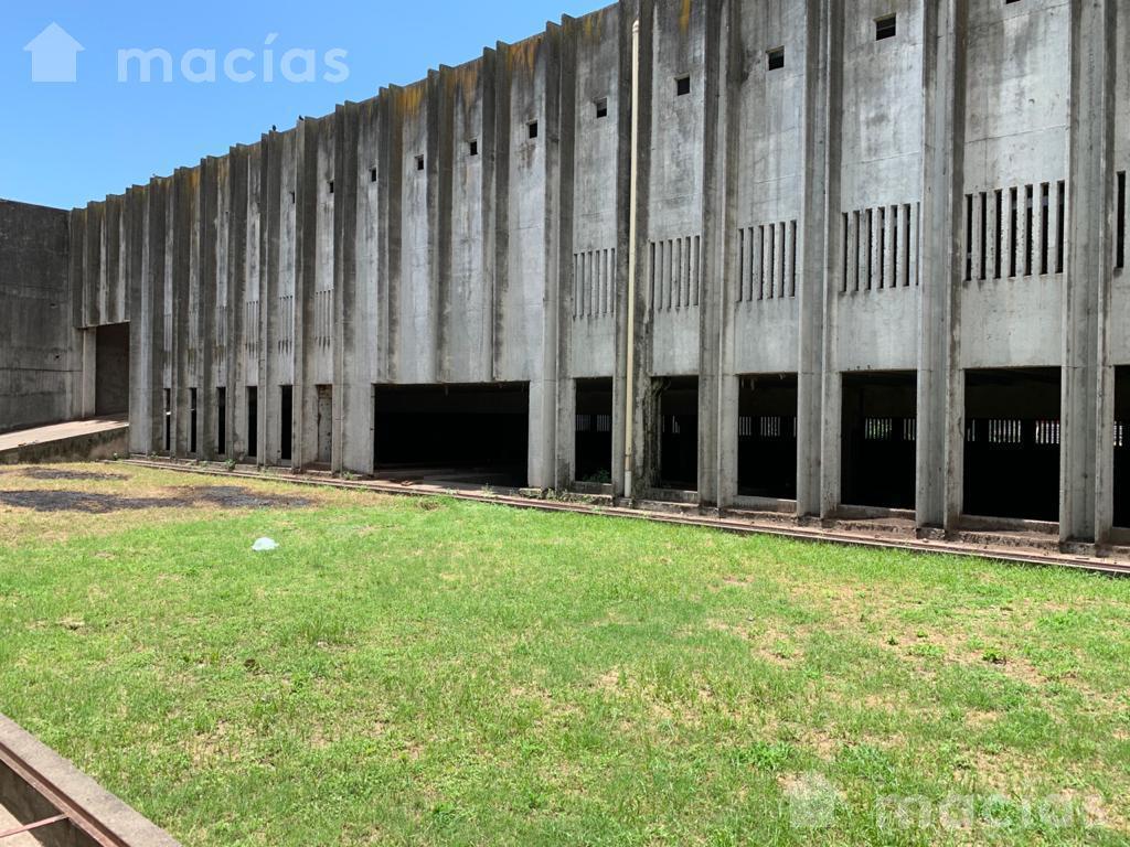 Foto Depósito en Alquiler en  Capital ,  Tucumán  Alfredo Guzman