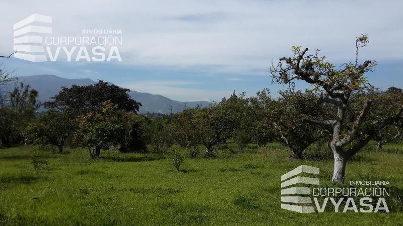 Foto Terreno en Venta en  Tumbaco,  Quito  Tumbaco - Collaqui, Hermoso Terreno de Venta de 10.000 m²