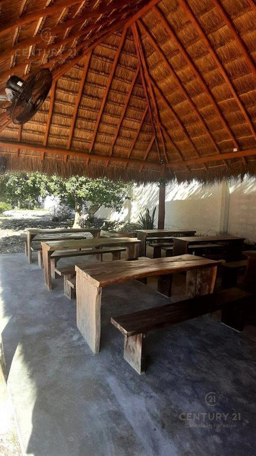 Tulum Bussiness Premises for Sale scene image 12