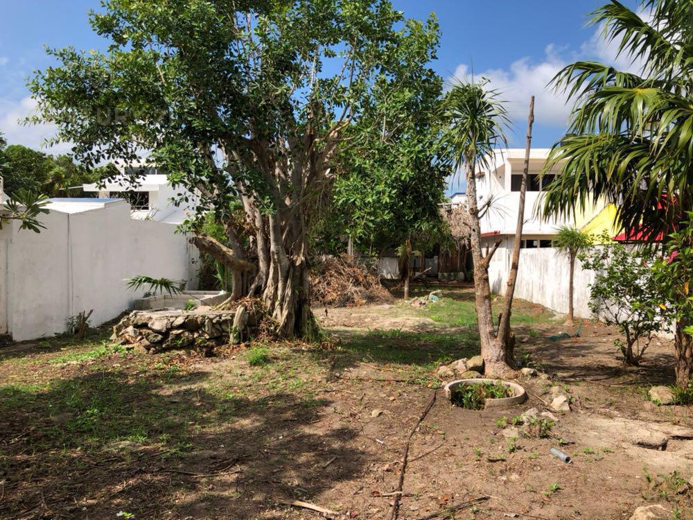 Quintana Roo Land for Sale scene image 0