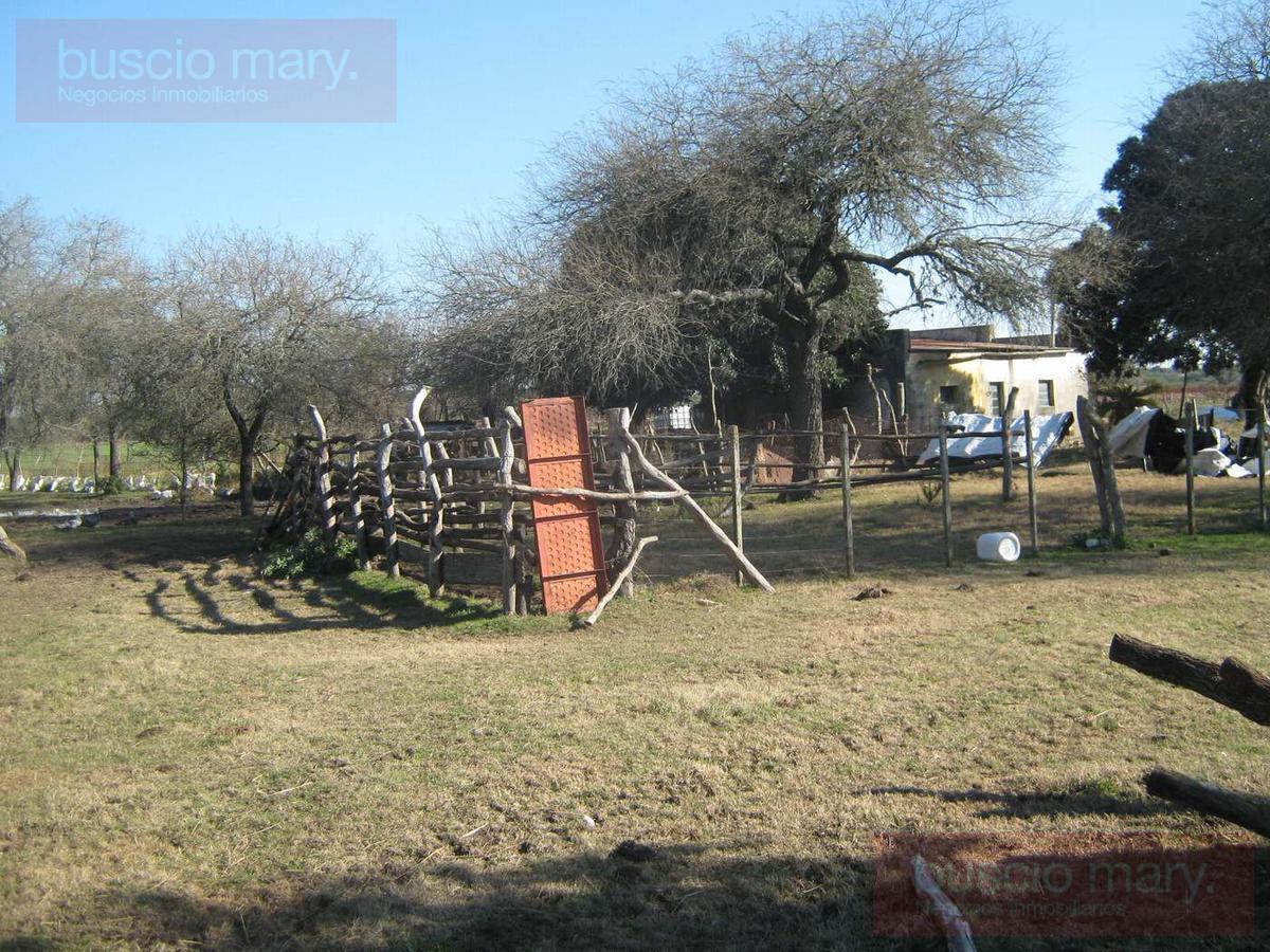 Foto Campo en Venta en  Juan Gonzalez,  Carmelo  Juan Gonzalez