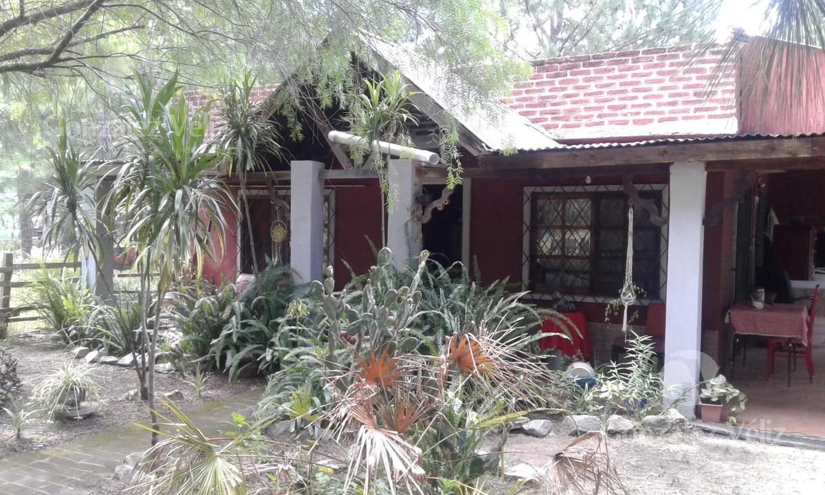 Foto Casa en Alquiler en  Zagarzazu,  Carmelo  Marejada esquina Sirena - Zagarzazú