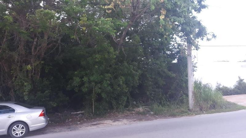 Foto Terreno en Venta en  Alamos II,  Pinamar  EN VENTA TERRENO EN ALAMOS C2338