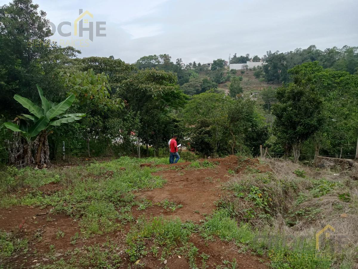Foto Terreno en Venta en  Xalapa ,  Veracruz  Venta de terrenos zona Animas, cercano a la Av Chedraui Caram y calle Prol. Sebastian Bach