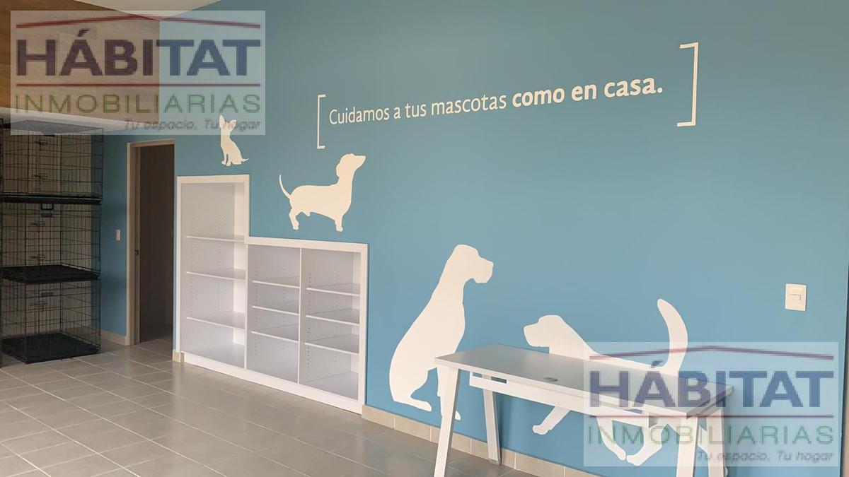 Foto Departamento en Renta en  Puebla de Zaragoza ,  Puebla  DEPARTAMENTO EN RENTA ENFRENTE DE PARQUE DEL ARTE EN PUEBLA