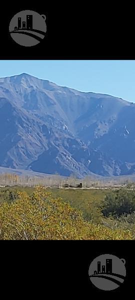 Foto Campo en Venta en  Uspallata,  Las Heras  Campo : 15 Has