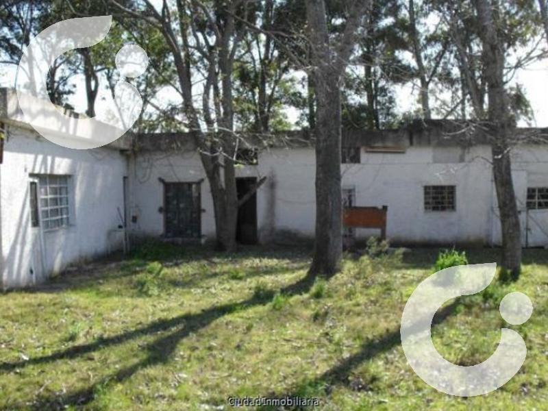 Foto Chacra en Venta en  Cuchilla Alta ,  Canelones  Campo ganadero Cuchilla Alta