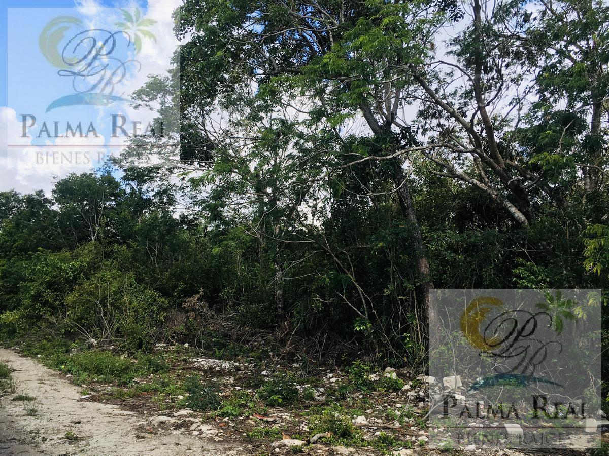 Foto Terreno en Venta en  Benito Juárez ,  Quintana Roo  Terreno en venta Cancun / Perfecto para invertir
