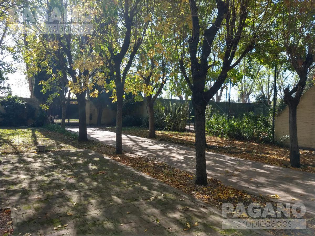 Foto Galpón en Venta en  La Plata ,  G.B.A. Zona Sur  155 e/ 34 y 35